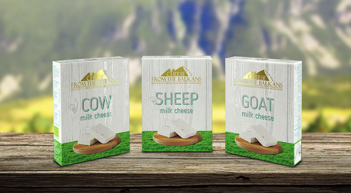 cheese box design